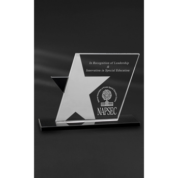 Ebony Star Award